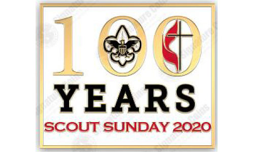 100 Year BSA Pin
